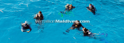 Maldives - Dive Safety