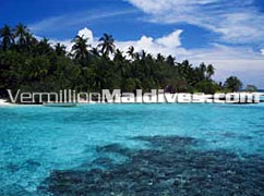 Resort hotel Asdu is a simple beautiful small island with house reef