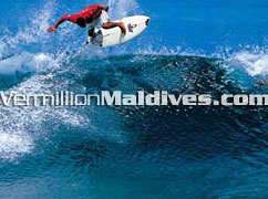 Snorkel, Dive & Surf during your stay in the Maldives Island.