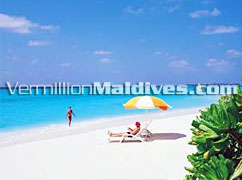 Wow! Relax on the beatiful Beach : visitmaldive & enjoy