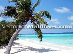 Lagoon, Reef and Beach - Banyan Tree – Maldives Islands