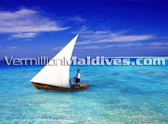 Cruise in the Maldives lagoon during your stay at Baros Island