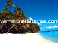 Lush Vegetation, Beautiful Beach & Lagoon at Maldives Biyadhoo