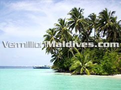 Biyadhoo Island Resort Maldives. Beautiful tropical island