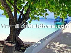 The Island of Biyadhoo Maldives Jetty & the nice lagoon