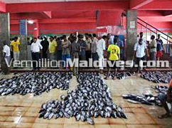 Sightseeing on your Male' Tour – Fish Market in Male' – Tour organized by Vermillion