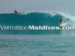 Surf Break - Maldives - Chaaya Island Dhonveli – Special for surfing