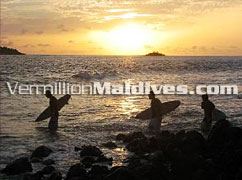 Surfers - Chaaya Island Dhonveli – Maldives Surf Holiday