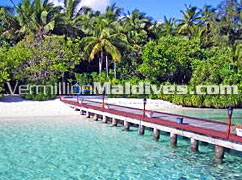 Its famous by different names. Ellaidhoo Resort or Ellaidhoo Beach & Spa or Chaaya Ellaidhoo
