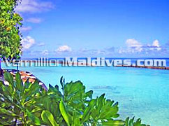 Tropical holiday island for your Maldives holiday. Chaayaa Ellaidhoo