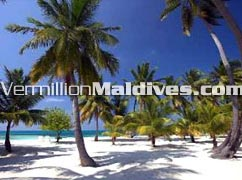 Club Faru - Maldives Island with white sand