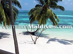 Nice Beach of Club Faru Maldives Beach Resort Hotel