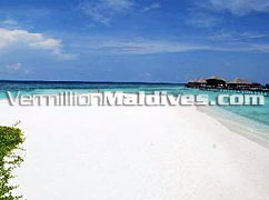 Beaches of Maldives Coco Palm Island Bodu Hithi