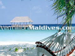 Beautiful and Good worth for money Vacation place. Cocoa Maldives