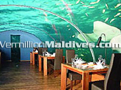 Dine and Dive together. Maldives Under Water at your finger tips
