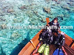 Dhoni Island is minutes away from well known diving spots of Maldives