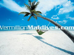 Maldives Hotel Diva Resort. Laze out in a Hammock on the Beach