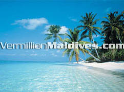 Beautiful untouched white sandy Beach & clear Maldives lagoons