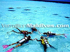 Diving and other activities available at this Resort Maldives Eriyadu