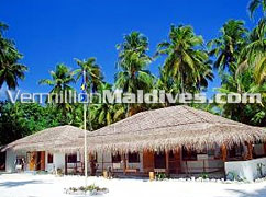 Filitheyo Maldives Diving Center: one of the best dive resorts in Maldives