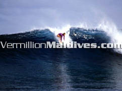 Four Seasons Maldives Surfing Holidays at Kuda Huraa