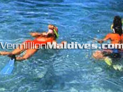 Snorkeling - Maldives Holidays at Giraavaru Island Resort
