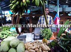 Local Market in the Maldives – Sight seeing in Male' – Take a Free tour with Vermillion