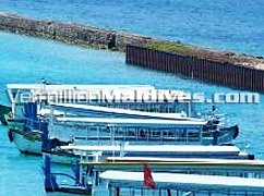 Ferry service to Male' the Capital of Maldives – at your service in Hulhule Island Hotel