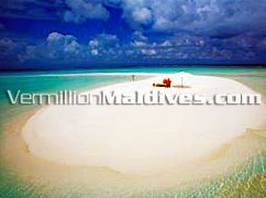 Sandbank Excursions: Tell your friend you were alone in the middle of Indian ocean