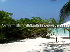 Hotel Raalhuveli Maldives Island. Truly Tropical holiday place