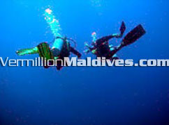 Visit the Sunny and the Under Water side of life….In Maldives