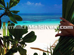 Beach - Just a Step away from Kuramathi Island Resort's Beach Villas