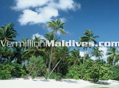 The beautiful island and the beach of Kuramathi Island Resort Maldives