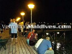 The famous fish feeding jetty of Lily Beach. Its an unbelievable experience