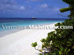 Powder White sand of the beach of Madoogali – Your affordable beach Holidays in Maldives