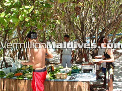 Excursions and Tours during the Maldives Vacation at Makunudu