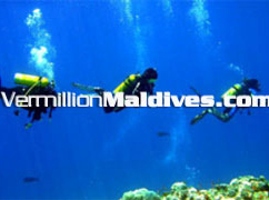 Naladhu Underwater. Travel & Explore with your family & friends