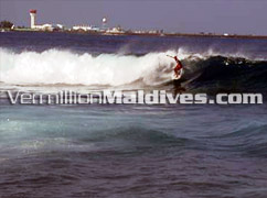 Surf point at one end of Male - Grab your board and Surf a wave during your Male Stay