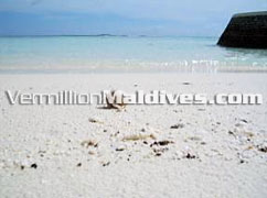 Travel & tour along the Beach of the natural resort Island Nika Maldives