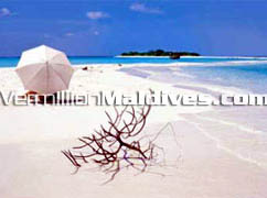 Visit Maldives. A place far away from today's world