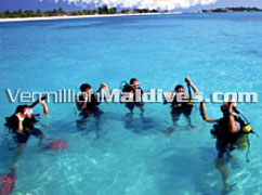 Maldives diving holiday packages available at this 5 star resort hotel