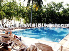 Maldives Reethibeach Swimming Pool.  friendly holiday place