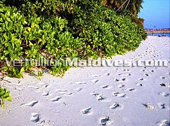 Leave your footprint in the sands of time in MALDIVES
