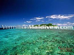 House reef of Royal Island Baa Atoll. 5 star Royal hospitality and service