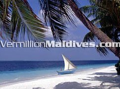 Luxury five star Maldives resort island with all the tropical & natural beauty