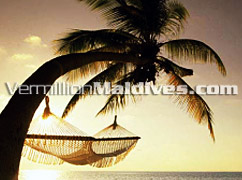 Luxury & private holiday place for your Maldive Honeymoon