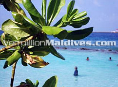 Natural Beauty of Maldives – Enjoy the sun and sea of Maldives