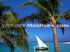 Sailboat in Lagoon of Velassaru – Beautiful Resort with a 5 star Service - Maldives