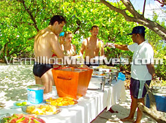 Picnic in Island near Velidhu Maldives  - Your own chef to serve your tastes
