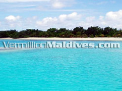 Arrival to Villivaru - Reopening Soon for all the Travelers to Maldives